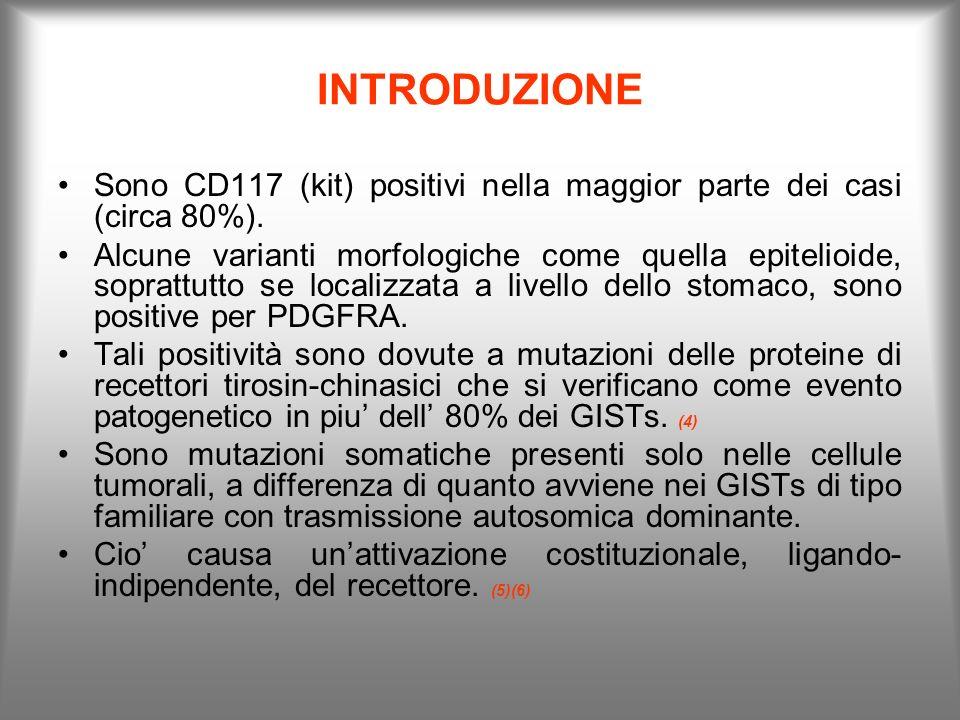 INTRODUZIONE Sono CD117 (kit) positivi nella maggior parte dei casi (circa 80%). Alcune varianti morfologiche come quella epitelioide, soprattutto se