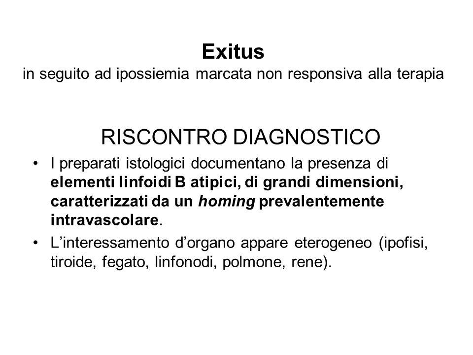 Exitus in seguito ad ipossiemia marcata non responsiva alla terapia RISCONTRO DIAGNOSTICO I preparati istologici documentano la presenza di elementi l