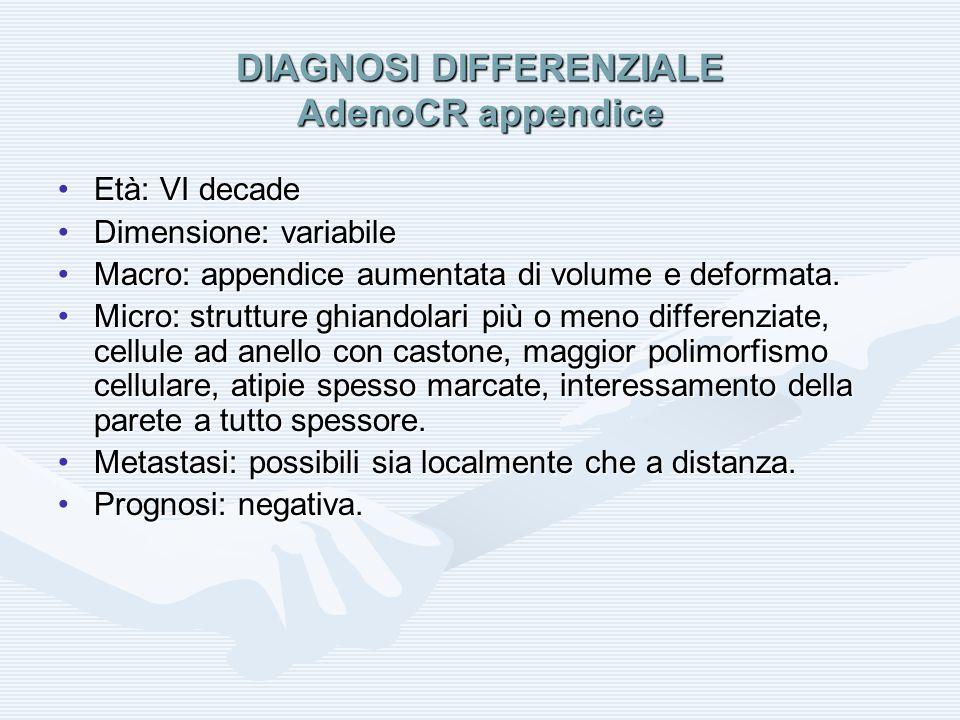 DIAGNOSI DIFFERENZIALE AdenoCR appendice Età: VI decadeEtà: VI decade Dimensione: variabileDimensione: variabile Macro: appendice aumentata di volume