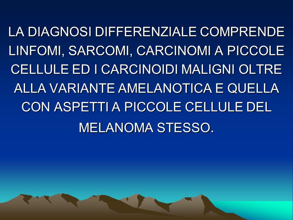 LA DIAGNOSI DIFFERENZIALE COMPRENDE LINFOMI, SARCOMI, CARCINOMI A PICCOLE CELLULE ED I CARCINOIDI MALIGNI OLTRE ALLA VARIANTE AMELANOTICA E QUELLA CON ASPETTI A PICCOLE CELLULE DEL MELANOMA STESSO.