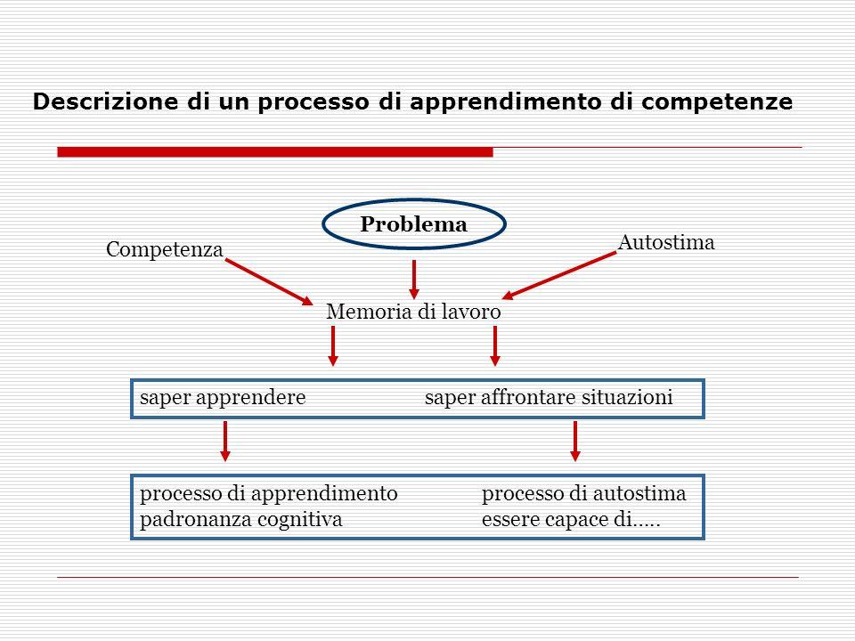 Descrizione di un processo di apprendimento di competenze Problema Memoria di lavoro saper apprendere saper affrontare situazioni Competenza Autostima processo di apprendimento processo di autostima padronanza cognitivaessere capace di…..