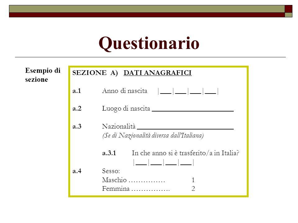 Questionario SEZIONE A) DATI ANAGRAFICI a.1Anno di nascita |___|___|___|___| a.2Luogo di nascita ______________________ a.3Nazionalità _______________