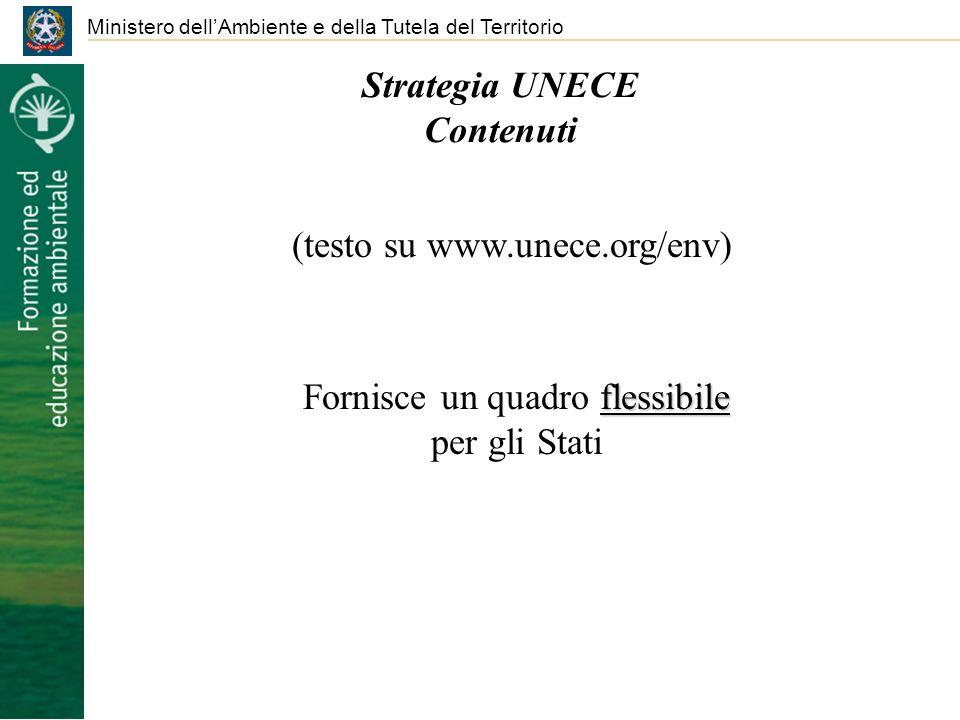 Strategia UNECE Contenuti Ministero dellAmbiente e della Tutela del Territorio (testo su www.unece.org/env) flessibile Fornisce un quadro flessibile p