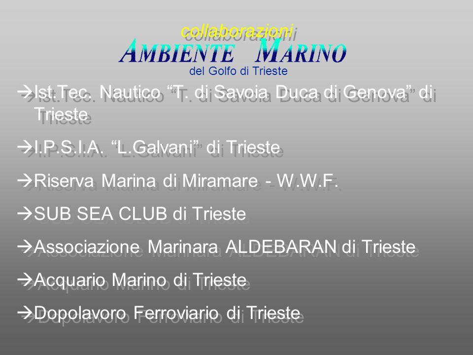 Ist.Tec. Nautico T. di Savoia Duca di Genova di Trieste I.P.S.I.A. L.Galvani di Trieste Riserva Marina di Miramare - W.W.F. SUB SEA CLUB di Trieste As