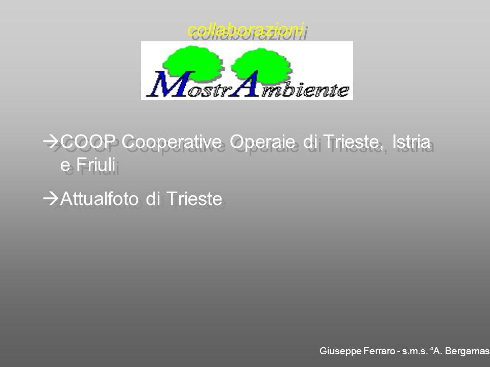 COOP Cooperative Operaie di Trieste, Istria e Friuli Attualfoto di Trieste COOP Cooperative Operaie di Trieste, Istria e Friuli Attualfoto di Trieste