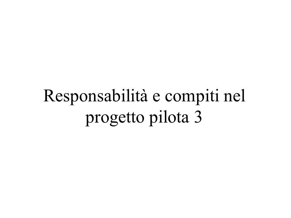 Responsabilità e compiti nel progetto pilota 3