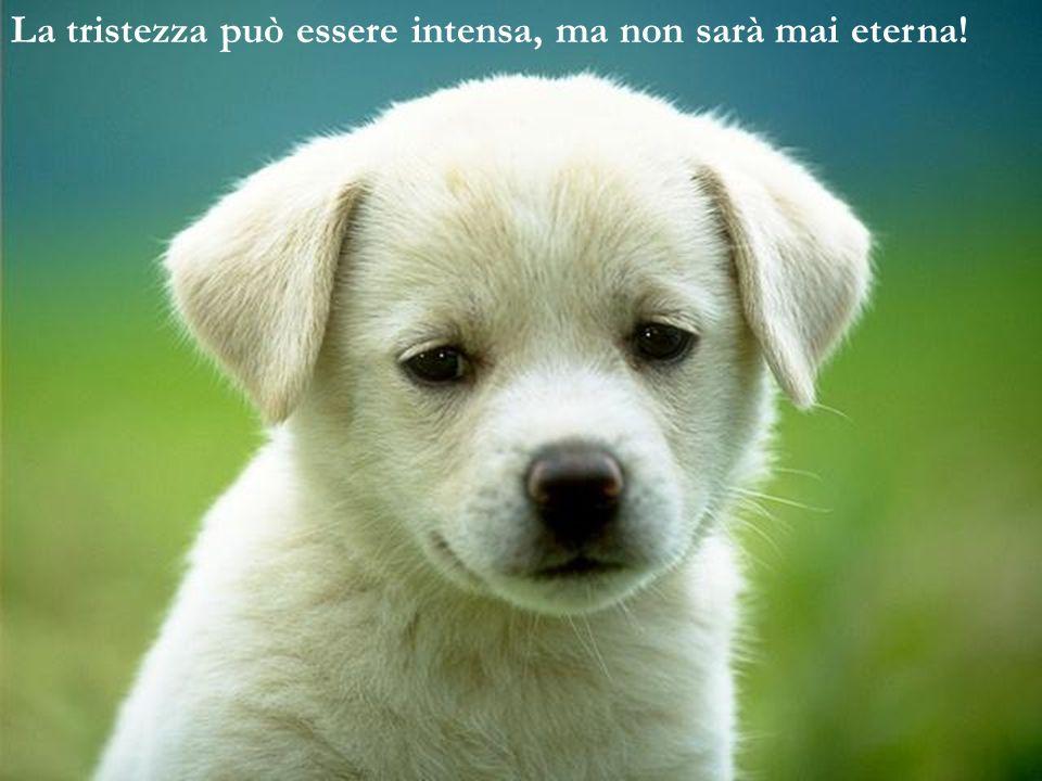La tristezza può essere intensa, ma non sarà mai eterna!
