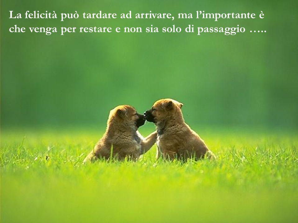 La felicità può tardare ad arrivare, ma limportante è che venga per restare e non sia solo di passaggio …..