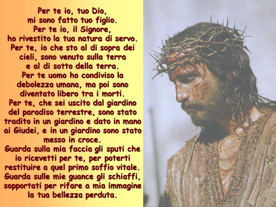 Per te io, tuo Dio, mi sono fatto tuo figlio. Per te io, il Signore, ho rivestito la tua natura di servo. Per te, io che sto al di sopra dei cieli, so