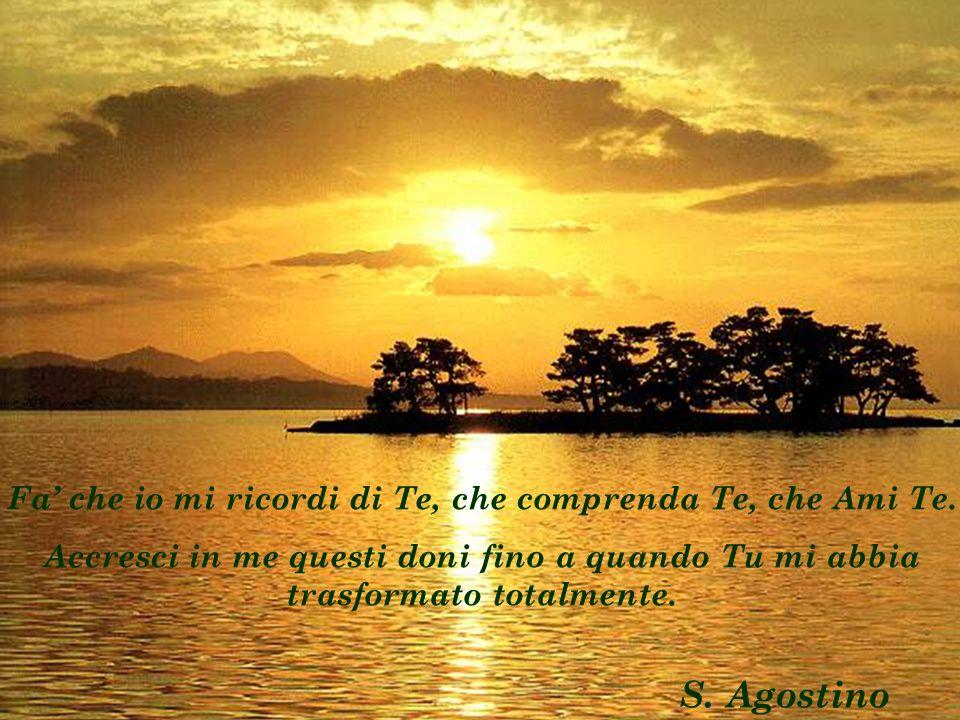 Fa che io mi ricordi di Te, che comprenda Te, che Ami Te. Accresci in me questi doni fino a quando Tu mi abbia trasformato totalmente. S. Agostino