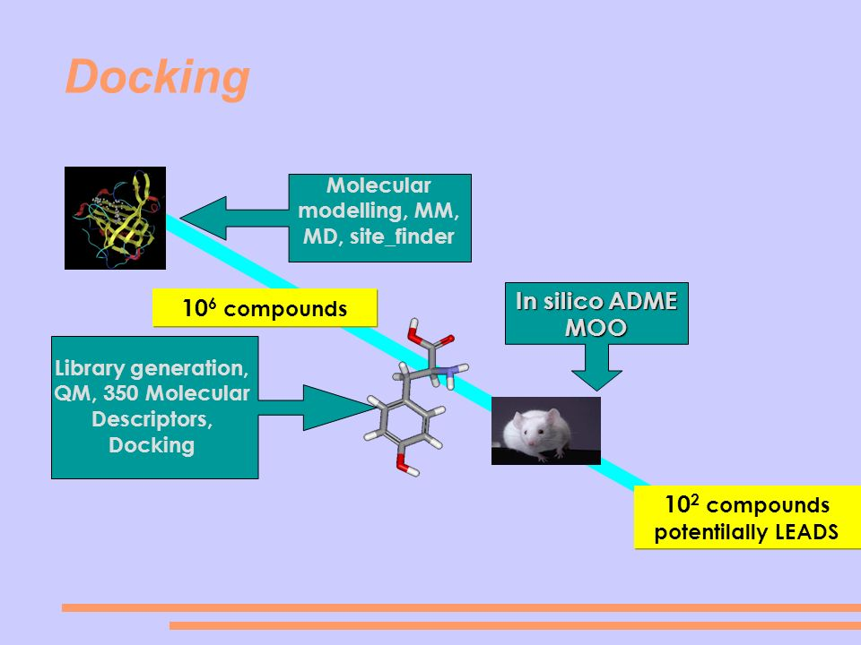 Molecular modelling, MM, MD, site_finder In silico ADME MOO Library generation, QM, 350 Molecular Descriptors, Docking 10 6 compounds 10 2 compounds p