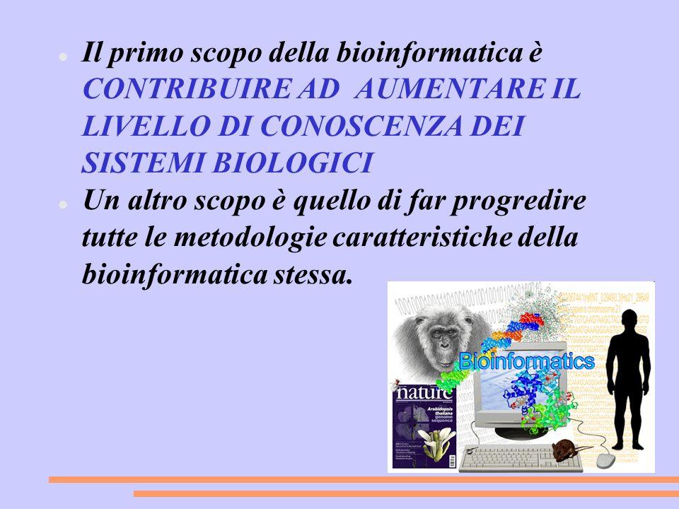 Il primo scopo della bioinformatica è CONTRIBUIRE AD AUMENTARE IL LIVELLO DI CONOSCENZA DEI SISTEMI BIOLOGICI Un altro scopo è quello di far progredir