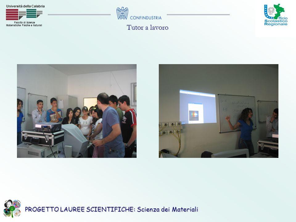 PROGETTO LAUREE SCIENTIFICHE: Scienza dei Materiali Facoltà di Scienze Matematiche Fisiche e Naturali Università della Calabria Tutor a lavoro