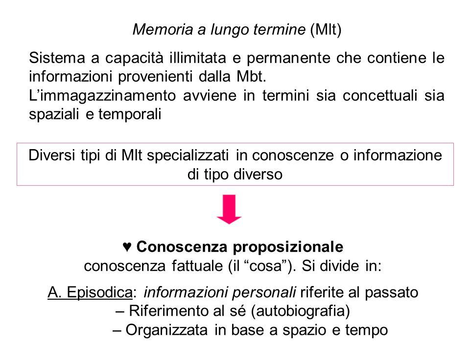 Memoria a lungo termine (Mlt) Sistema a capacità illimitata e permanente che contiene le informazioni provenienti dalla Mbt.