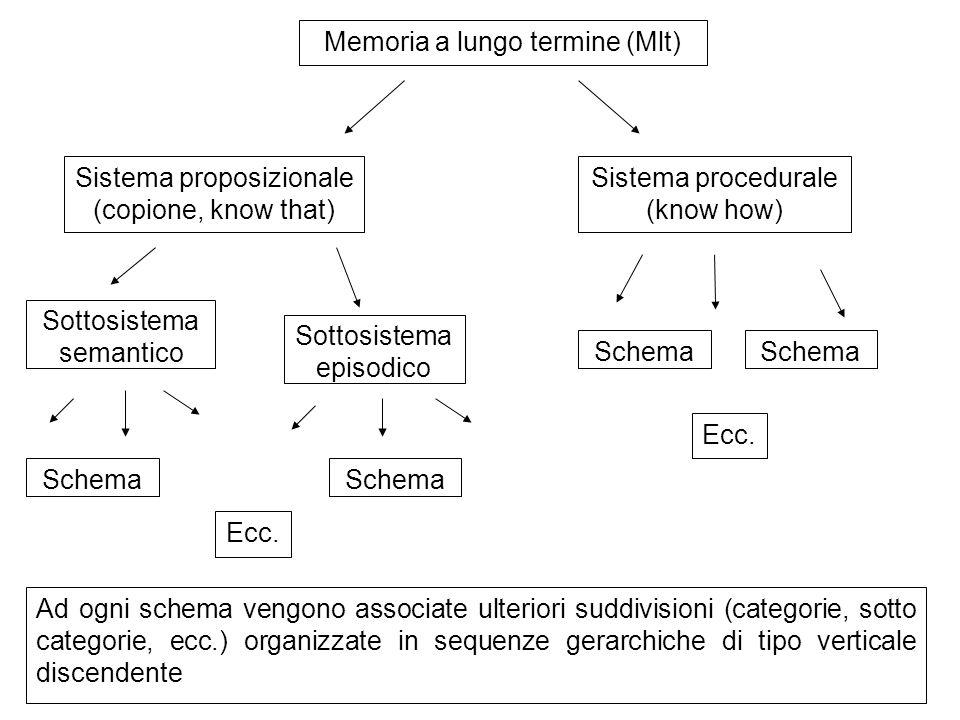 Memoria a lungo termine (Mlt) Sistema proposizionale (copione, know that) Sistema procedurale (know how) Sottosistema episodico Sottosistema semantico Schema Ecc.