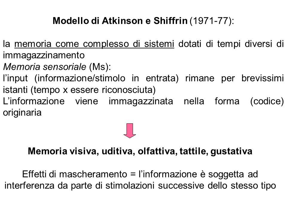 Modello di Atkinson e Shiffrin (1971-77): la memoria come complesso di sistemi dotati di tempi diversi di immagazzinamento Memoria sensoriale (Ms): linput (informazione/stimolo in entrata) rimane per brevissimi istanti (tempo x essere riconosciuta) Linformazione viene immagazzinata nella forma (codice) originaria Memoria visiva, uditiva, olfattiva, tattile, gustativa Effetti di mascheramento = linformazione è soggetta ad interferenza da parte di stimolazioni successive dello stesso tipo