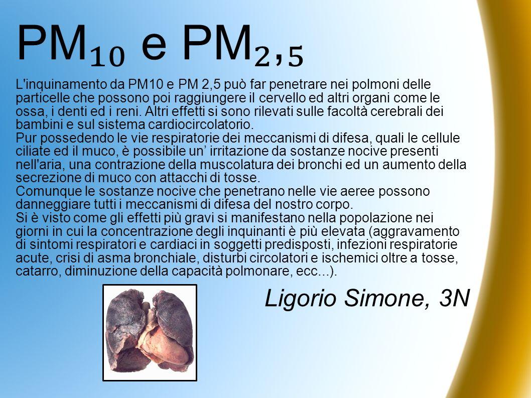 PM e PM, L'inquinamento da PM10 e PM 2,5 può far penetrare nei polmoni delle particelle che possono poi raggiungere il cervello ed altri organi come l