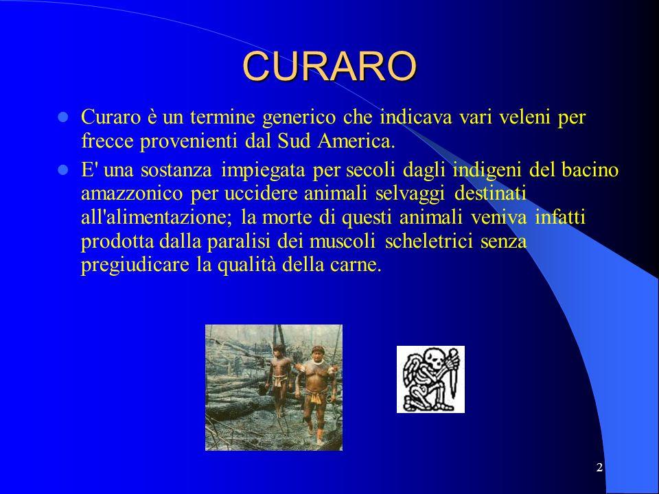 2 Curaro è un termine generico che indicava vari veleni per frecce provenienti dal Sud America. E' una sostanza impiegata per secoli dagli indigeni de