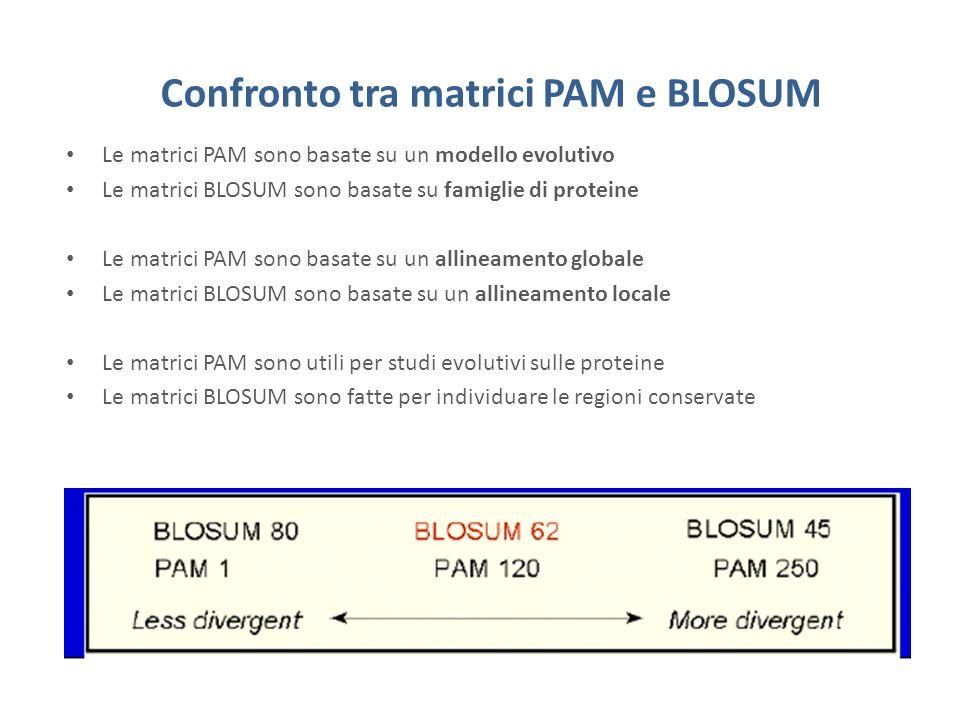 Confronto tra matrici PAM e BLOSUM Le matrici PAM sono basate su un modello evolutivo Le matrici BLOSUM sono basate su famiglie di proteine Le matrici PAM sono basate su un allineamento globale Le matrici BLOSUM sono basate su un allineamento locale Le matrici PAM sono utili per studi evolutivi sulle proteine Le matrici BLOSUM sono fatte per individuare le regioni conservate