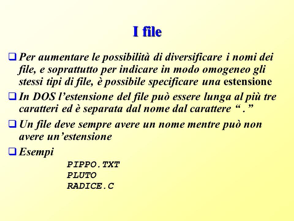 I file Per aumentare le possibilità di diversificare i nomi dei file, e soprattutto per indicare in modo omogeneo gli stessi tipi di file, è possibile specificare una estensione In DOS lestensione del file può essere lunga al più tre caratteri ed è separata dal nome dal carattere.
