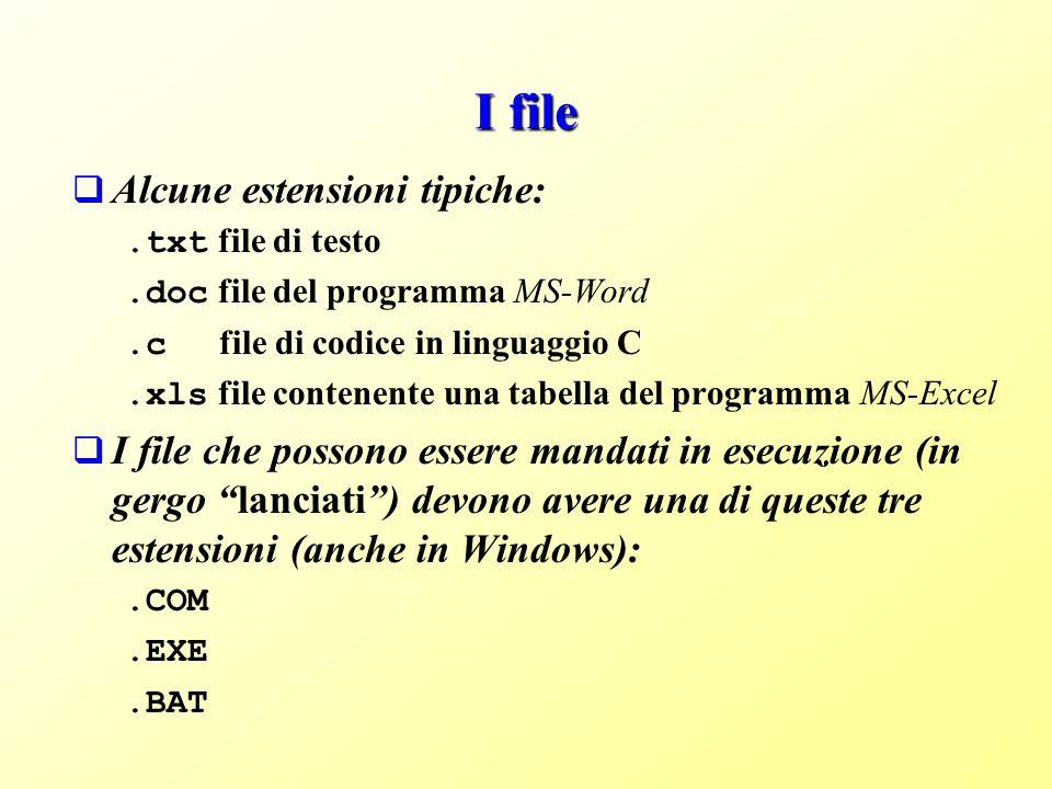 I file Alcune estensioni tipiche:.txt file di testo.doc file del programma MS-Word.c file di codice in linguaggio C.xls file contenente una tabella del programma MS-Excel I file che possono essere mandati in esecuzione (in gergo lanciati) devono avere una di queste tre estensioni (anche in Windows):.COM.EXE.BAT