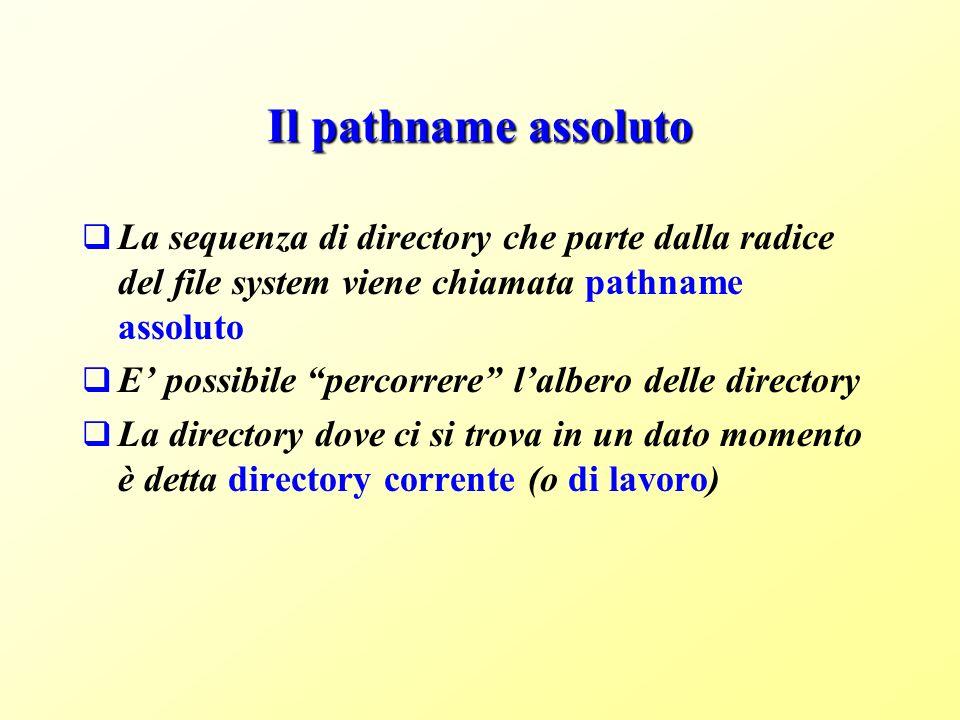 Il pathname assoluto La sequenza di directory che parte dalla radice del file system viene chiamata pathname assoluto E possibile percorrere lalbero delle directory La directory dove ci si trova in un dato momento è detta directory corrente (o di lavoro)