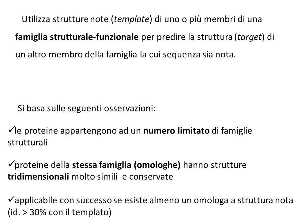 Utilizza strutture note (template) di uno o più membri di una famiglia strutturale-funzionale per predire la struttura (target) di un altro membro del