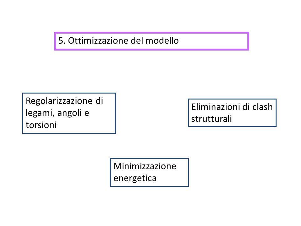 5. Ottimizzazione del modello Minimizzazione energetica Regolarizzazione di legami, angoli e torsioni Eliminazioni di clash strutturali