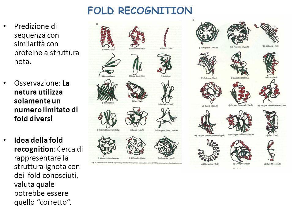FOLD RECOGNITION Predizione di sequenza con similarità con proteine a struttura nota. Osservazione: La natura utilizza solamente un numero limitato di