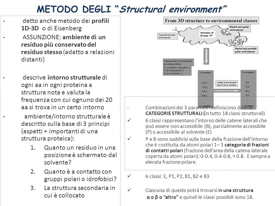 METODO DEGLI Structural environment - detto anche metodo dei profili 1D-3D o di Eisenberg - ASSUNZIONE: ambiente di un residuo più conservato del resi