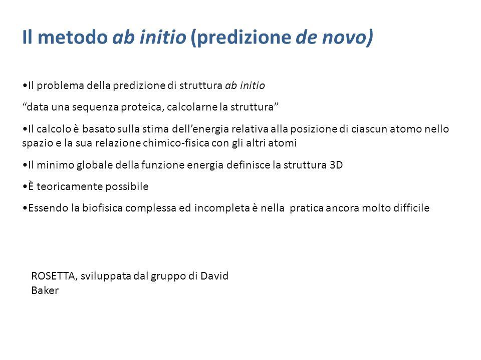 Il metodo ab initio (predizione de novo) Il problema della predizione di struttura ab initio data una sequenza proteica, calcolarne la struttura Il ca