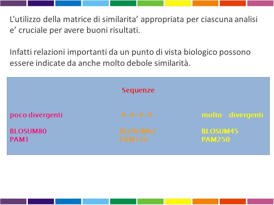 ALLINEAMENTI MULTIPLI Lallineamento multiplo è unipotesi di omologia posizionale tra basi o aminoacidi Tutti i residui presenti nella stessa colonna di un multi-allineamento sono evolutivamente correlati No applicabili algoritmi di allineamento globale esatto (cresce esponenzialmente con il numero di sequenze da allineare) Teoricamente sarebbe possibile applicare lalgoritmo di allineamento globale, ma in pratica non lo è perché richiede tempi di esecuzione troppo lunghi METODI APPROSSIMATI Es.