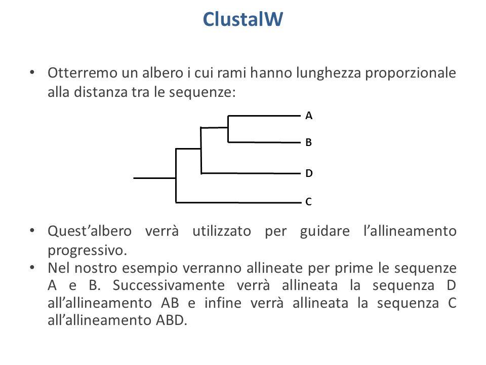 Allineamento con ClustalW La presenza di un simbolo * in fondo ad una colonna indica un match del 100%.