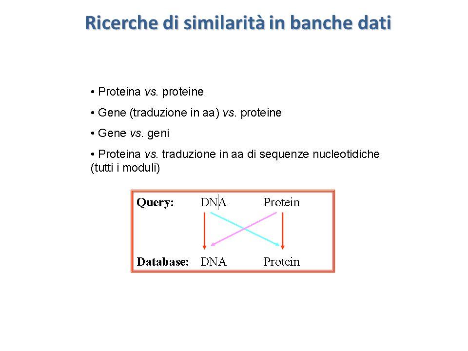 Valutazione significatività dei match identificati Quanto il match (query vs seq x del DB) identificato dagli allineamenti locali di BLAST è significativo.