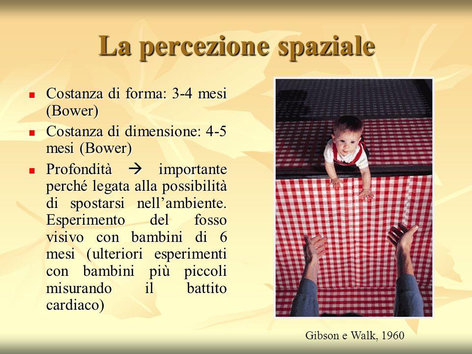 La percezione spaziale Costanza di forma: 3-4 mesi (Bower) Costanza di forma: 3-4 mesi (Bower) Costanza di dimensione: 4-5 mesi (Bower) Costanza di di