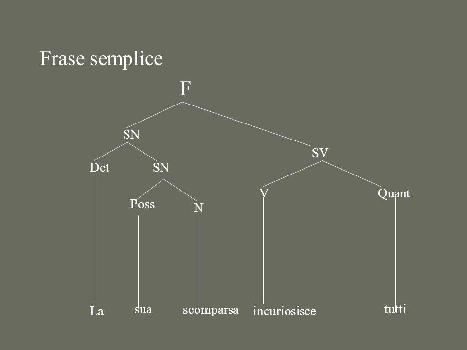 Frase semplice F SN Det La SN Poss sua N scomparsa SV V incuriosisce Quant tutti