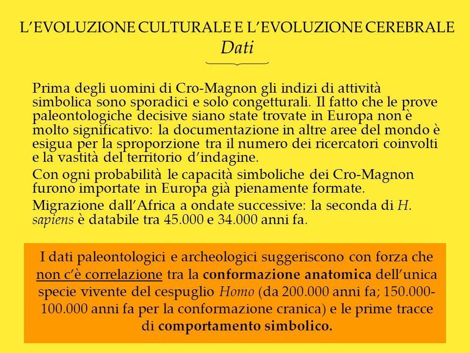 LEVOLUZIONE CULTURALE E LEVOLUZIONE CEREBRALE Le dimensioni non contano 1.Seppur in continuità con le grandi dimensioni cerebrali degli altri membri del genere Homo (il volume è pressoché identico a quello dei Neandertaliani) il cranio di sapiens ha una conformazione, che si sviluppa verso l alto, invece che in lunghezza e in larghezza.