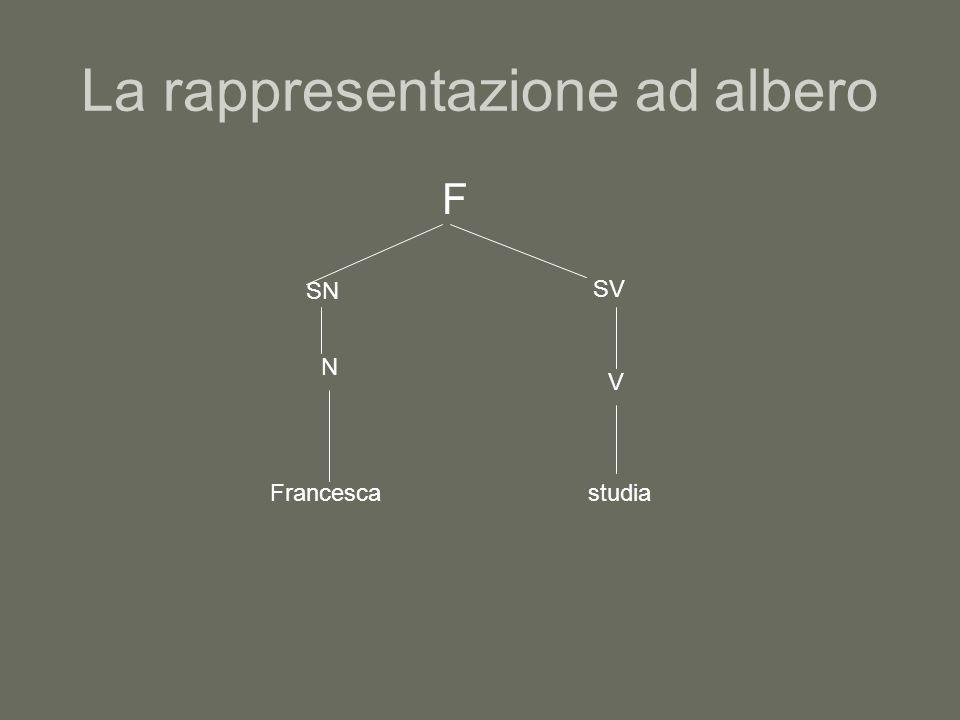 La rappresentazione ad albero F SN N Francesca SV V studia
