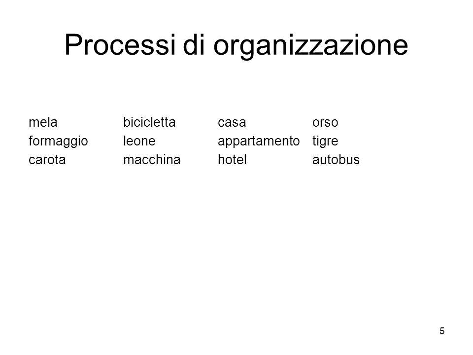 5 Processi di organizzazione melabiciclettacasaorso formaggioleoneappartamentotigre carota macchinahotelautobus