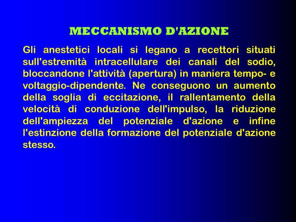 Prevede l iniezione dell anestetico nel liquor dello spazio subaracnoideo a livello lombare (al di sotto della 2 vertebra lombare).