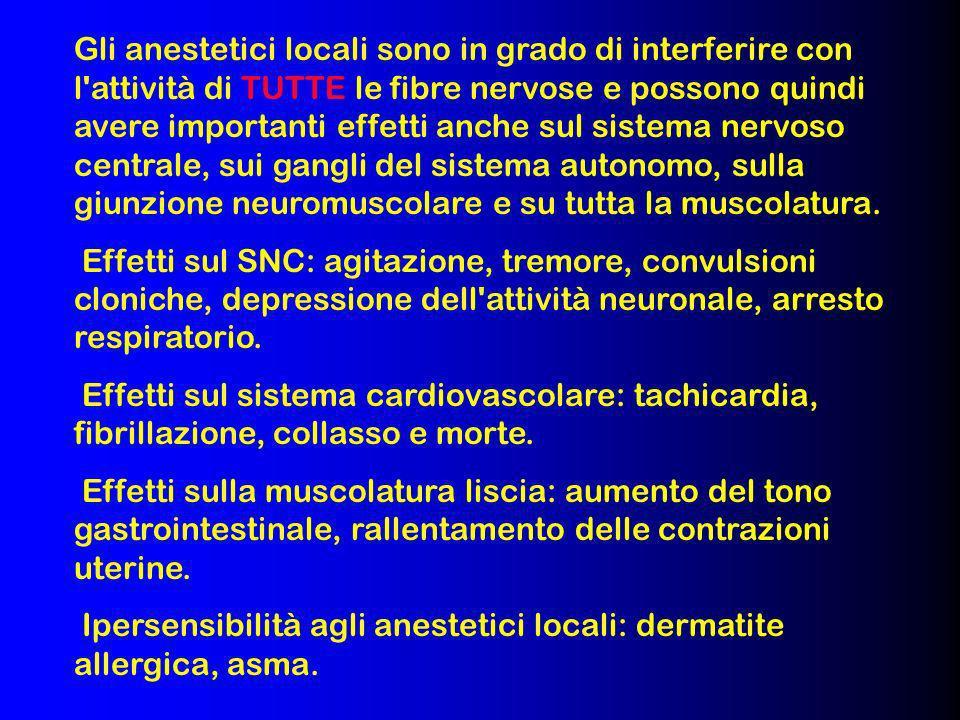 Gli anestetici locali sono in grado di interferire con l'attività di TUTTE le fibre nervose e possono quindi avere importanti effetti anche sul sistem