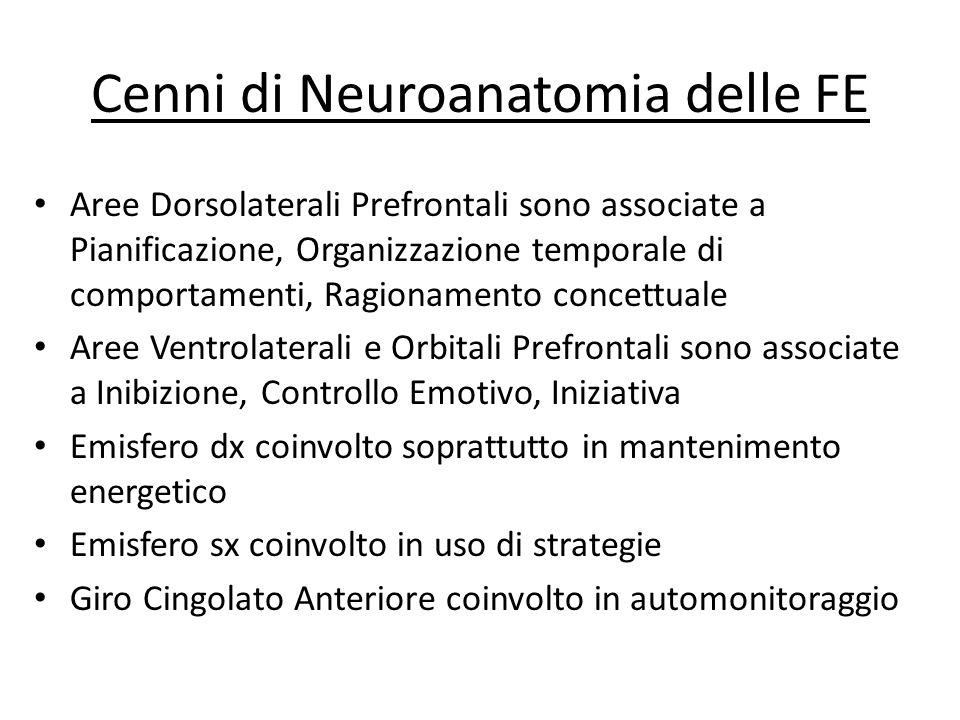 Cenni di Neuroanatomia delle FE Aree Dorsolaterali Prefrontali sono associate a Pianificazione, Organizzazione temporale di comportamenti, Ragionament