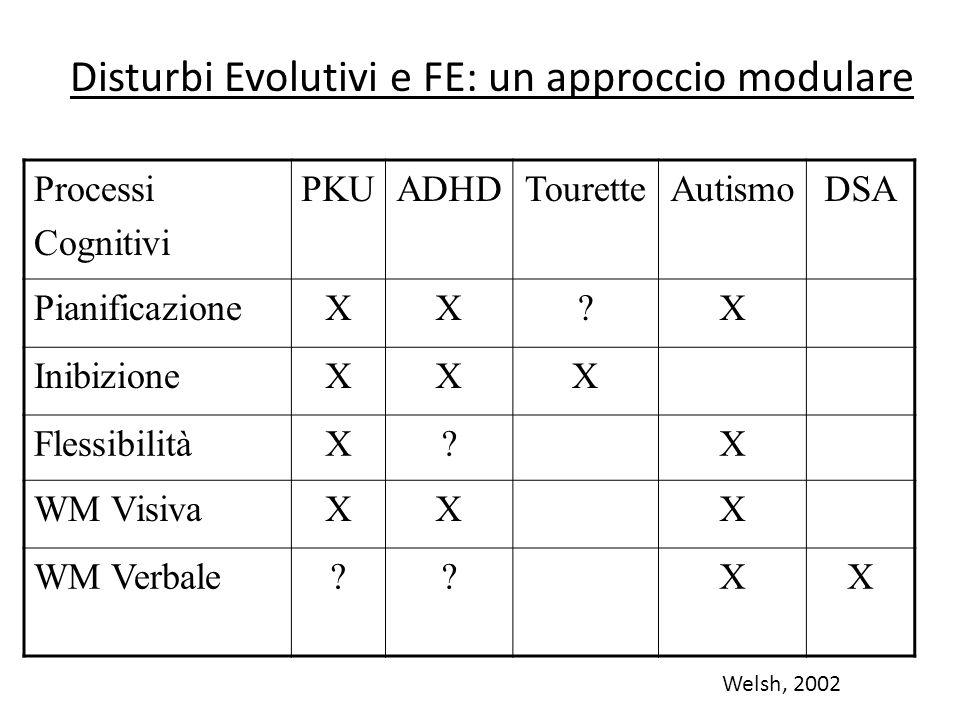Disturbi Evolutivi e FE: un approccio modulare Processi Cognitivi PKUADHDTouretteAutismoDSA PianificazioneXX?X InibizioneXXX FlessibilitàX?X WM Visiva