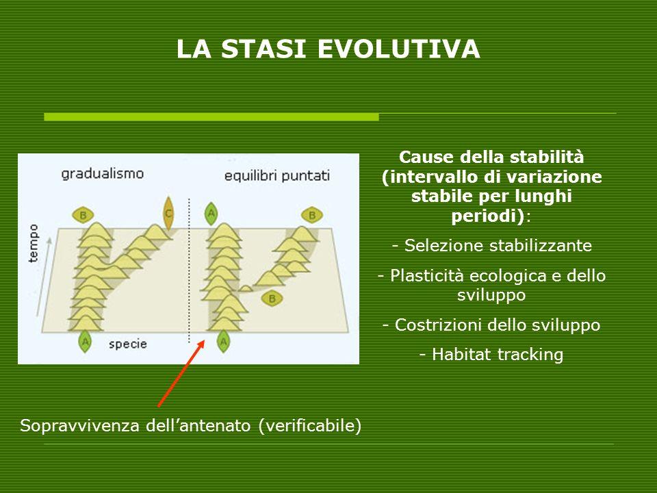 Cause della stabilità (intervallo di variazione stabile per lunghi periodi): - Selezione stabilizzante - Plasticità ecologica e dello sviluppo - Costr