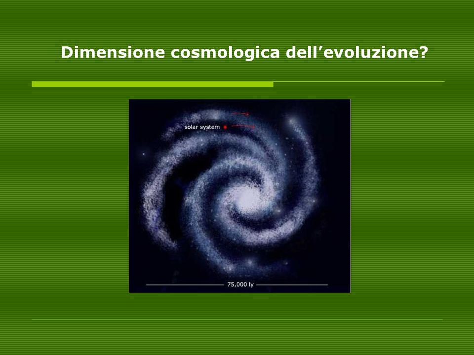 Dimensione cosmologica dellevoluzione?