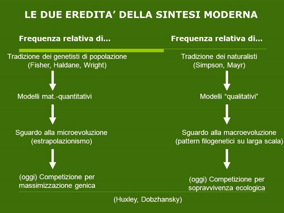 LE DUE EREDITA DELLA SINTESI MODERNA Tradizione dei genetisti di popolazione (Fisher, Haldane, Wright) Tradizione dei naturalisti (Simpson, Mayr) Mode