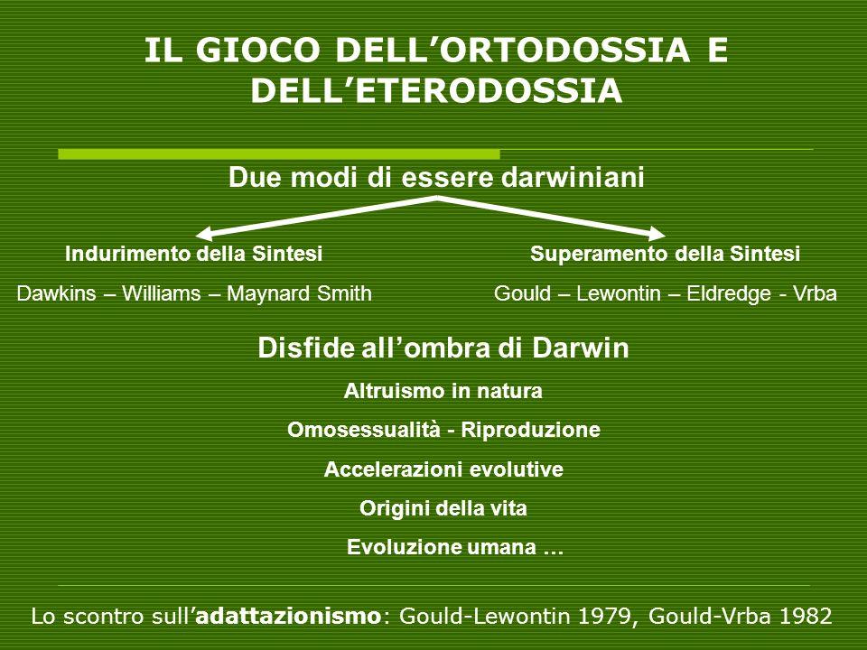 IL GIOCO DELLORTODOSSIA E DELLETERODOSSIA Due modi di essere darwiniani Indurimento della Sintesi Dawkins – Williams – Maynard Smith Superamento della