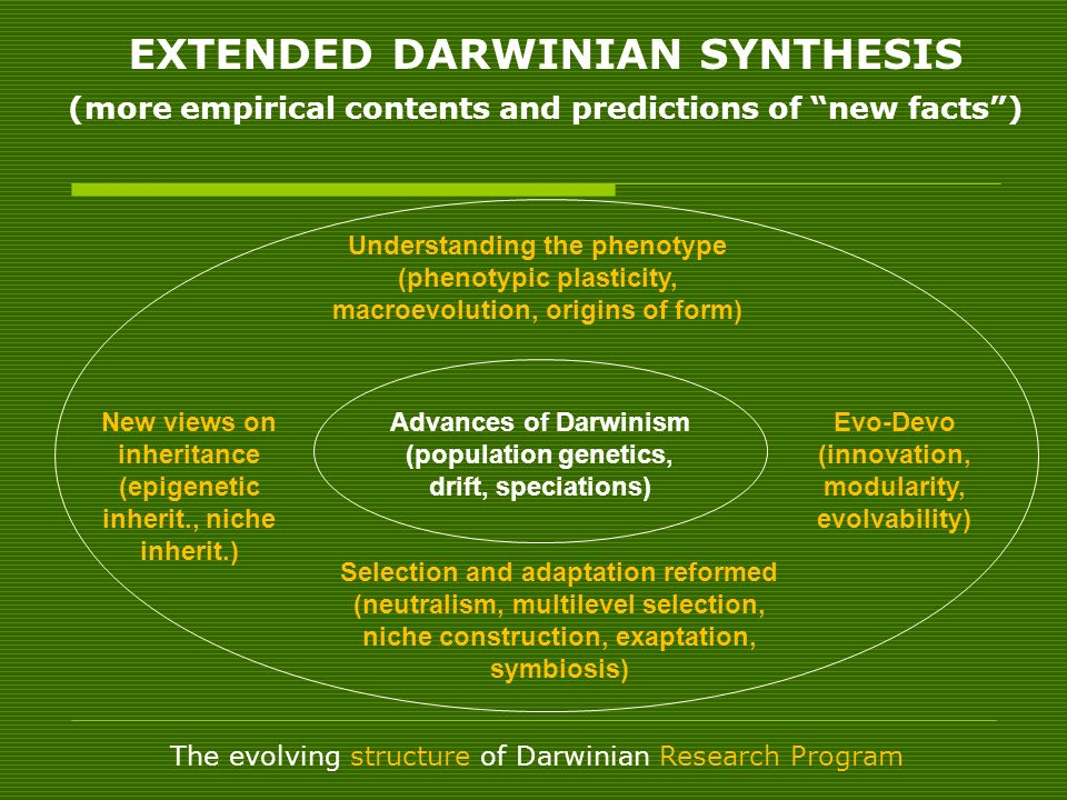 NO PARADIGM SHIFT: 1 – Paradigm is too strong a concept (normal science; language; world-view) 2 – There are no growing, irrecoverable anomalies 3 - Exceptions are no confutations (but, the need for pluralistic patterns of explanation) 4 – Anomalies find explanation with integrative hypotheses, consistent with the core of the research programme 5 – A no longer debated core is surrounded by a protective belt of auxiliary assumptions in progress What is happening is a progressive transition of RP (I.
