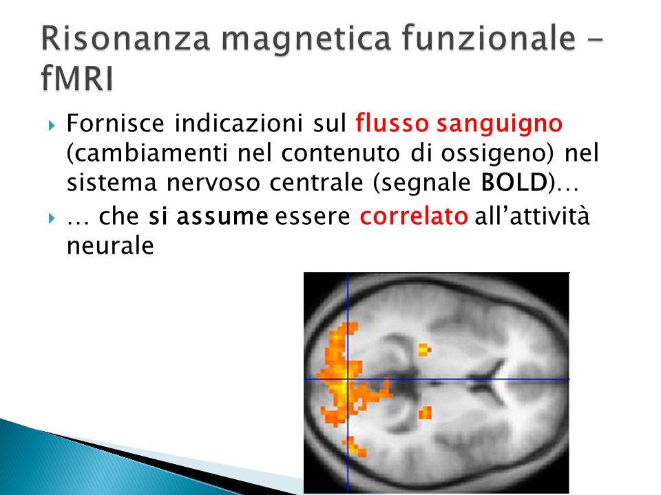Fornisce indicazioni sul flusso sanguigno (cambiamenti nel contenuto di ossigeno) nel sistema nervoso centrale (segnale BOLD)… … che si assume essere