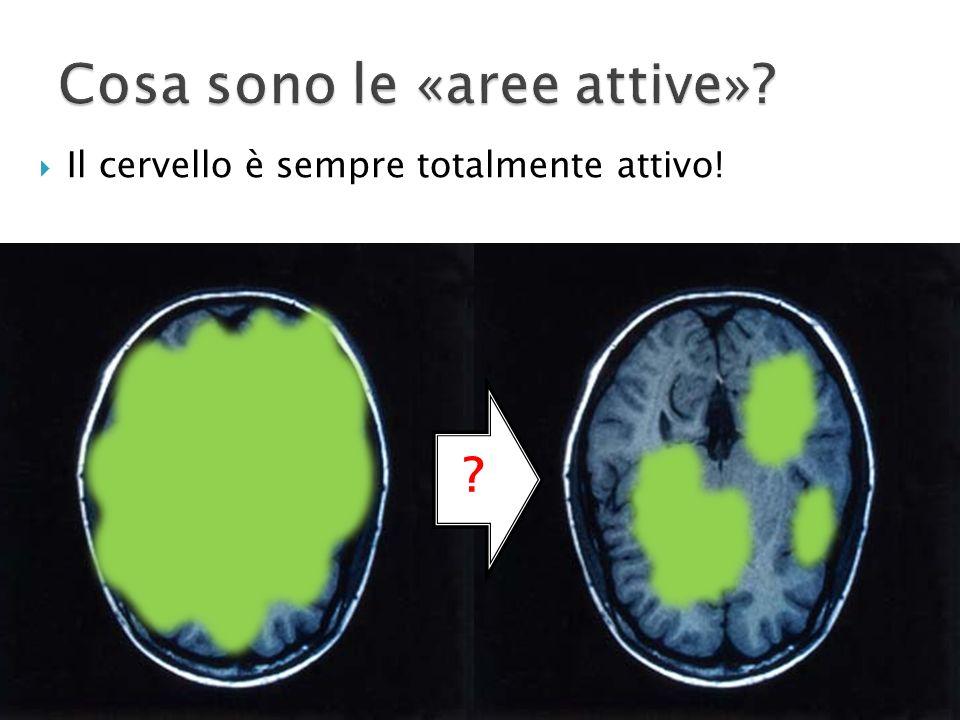 Il cervello è sempre totalmente attivo! ?